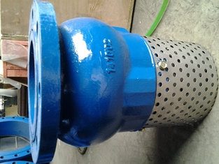 Screen Mesh CUSTOM flanged foot valve With Stainless Steel Screen Strainer